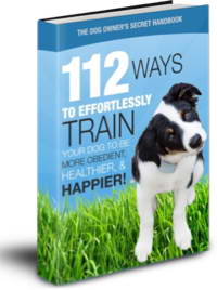 Dog Owner's Secret Handbook